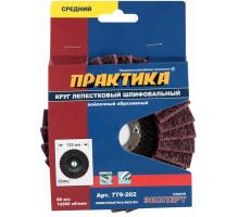 Круг лепестковый войлочный ПРАКТИКА 125х22 мм